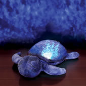 The Seascape Projecting Turtle.