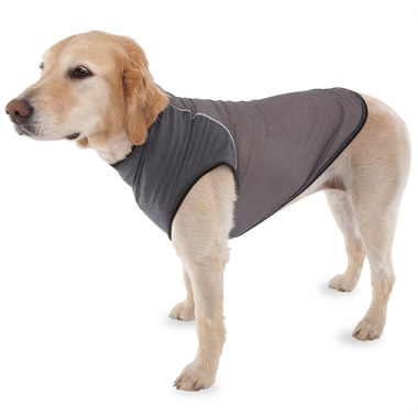The Insect Repelling Canine Vest.