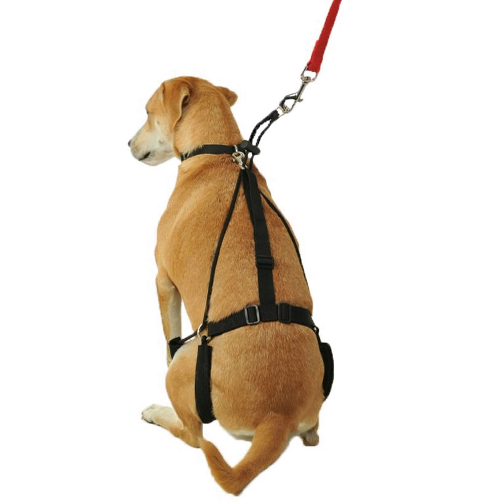 The Canine Tug Preventing Harness 2
