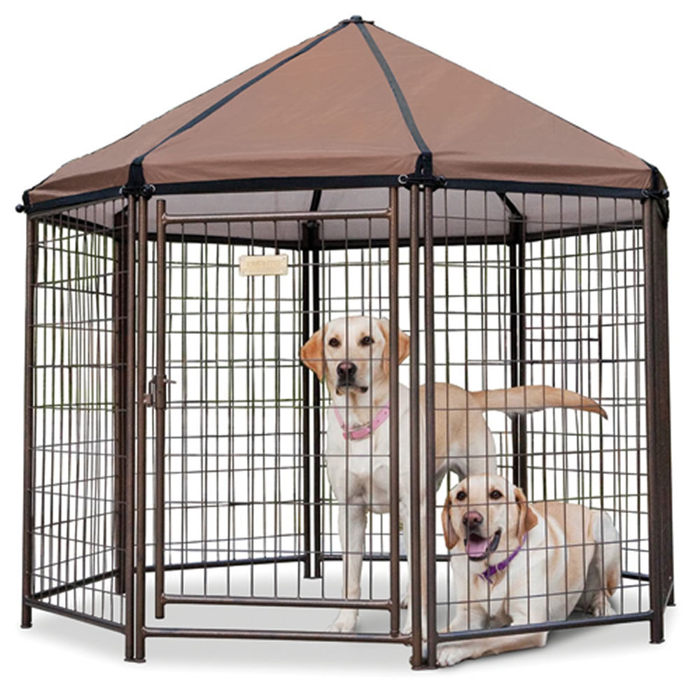 The Dog Gazebo 1