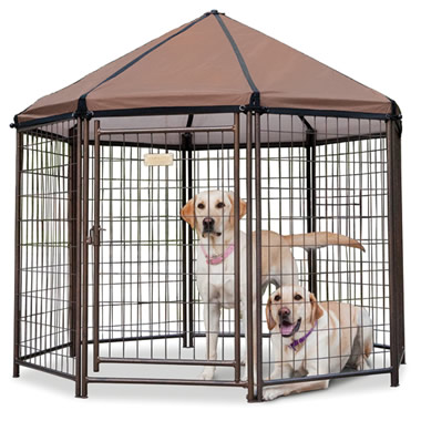 The Dog Gazebo.