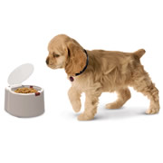 The Microchip Activated Pet Feeder.