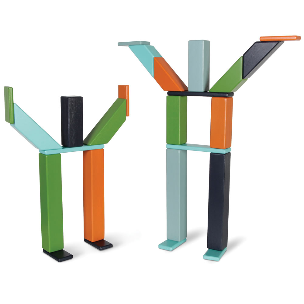 The Magnetized Wooden Blocks Set5