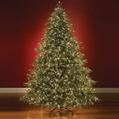 The World's Best Prelit Fraser Fir (LED).