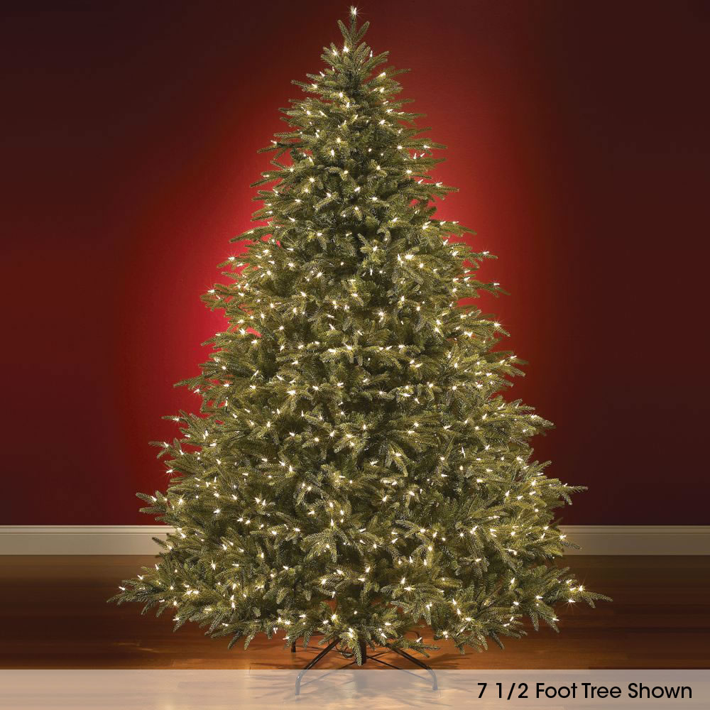 The World's Best Prelit Fraser Fir <strong>(8 5' Slim LED) </strong> 1