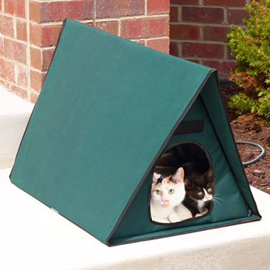 The Only Multiple-Cat Outdoor Heated Shelter.