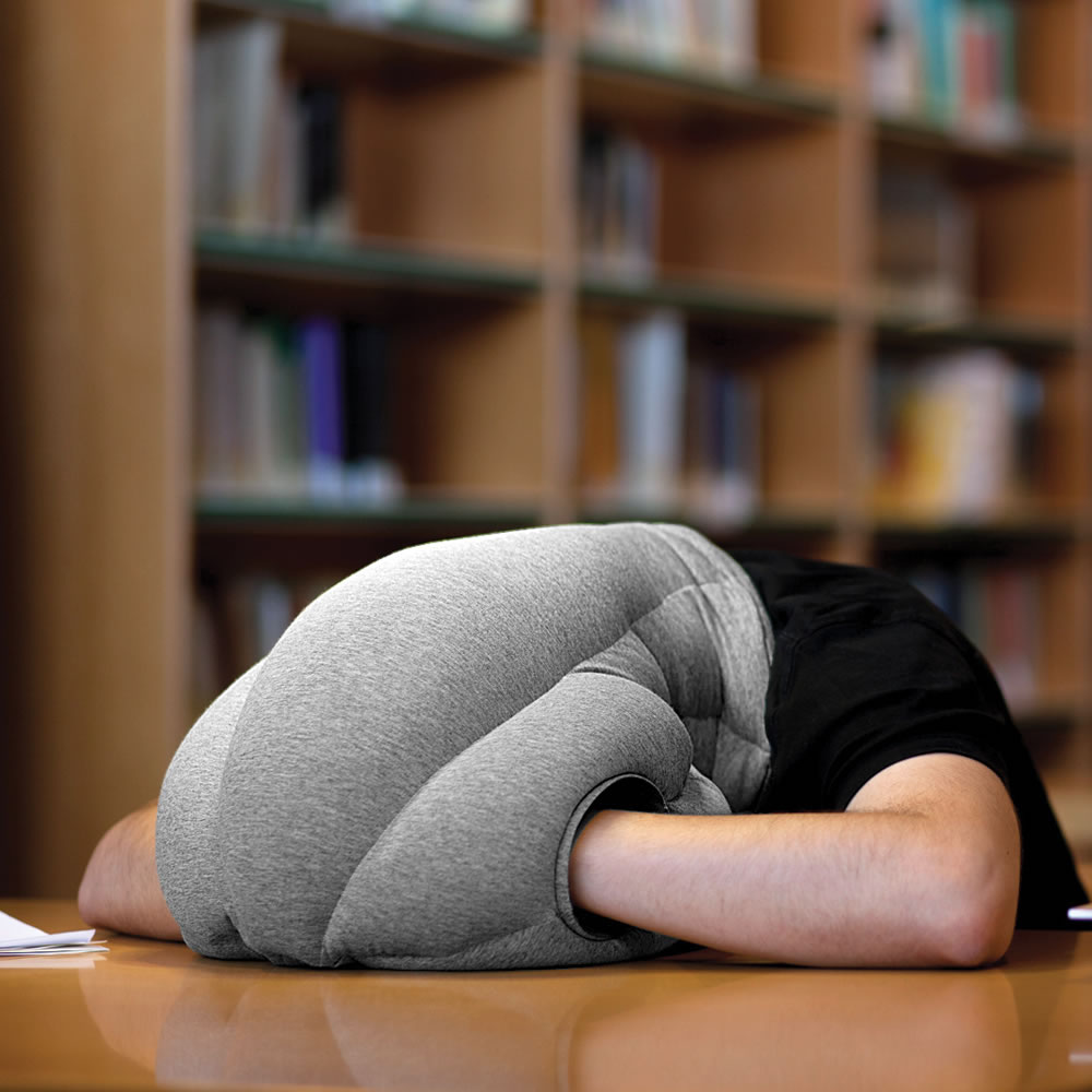 The Power Nap Head Pillow2