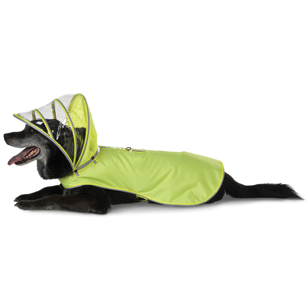The Canine's Raincoat 2