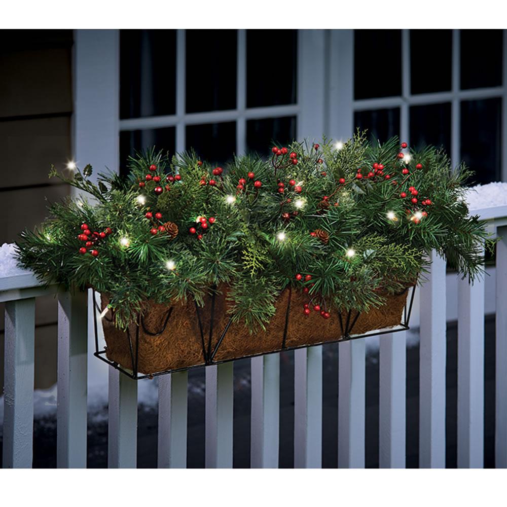The Cordless Prelit Poinsettia Flower Box 4