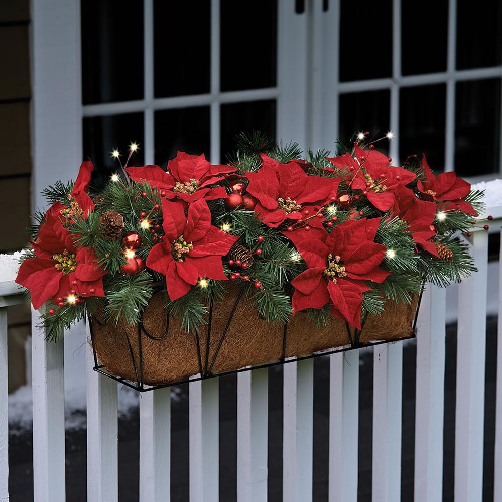 The Cordless Prelit Poinsettia Flower Box 1