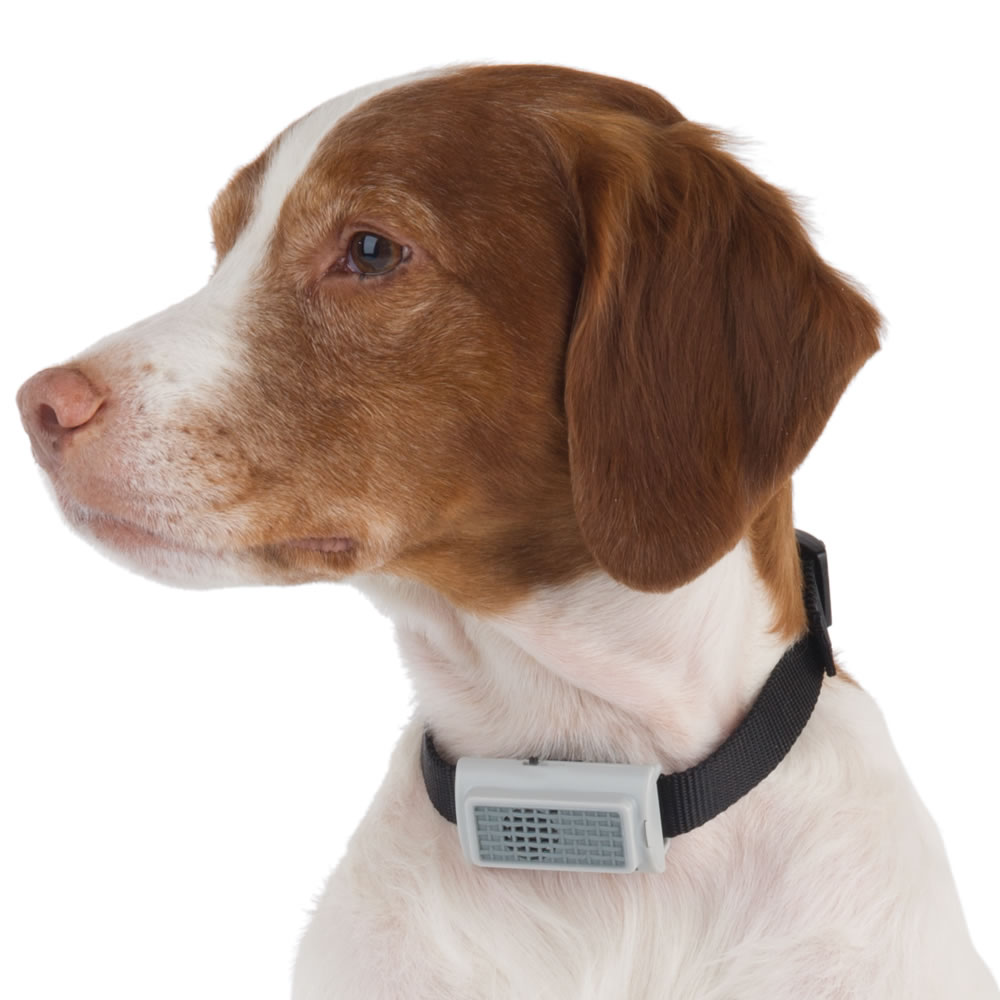 The Bark Deterring Ultrasonic Collar 1