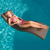 The Amphibious Chaise.