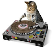 The Cool Cat's DJ Scratch Pad.