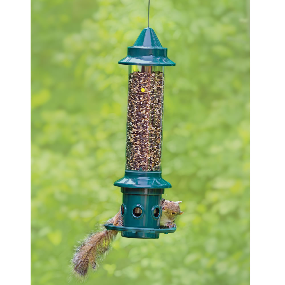 The Squirrel Thwarting Bird Feeder 2