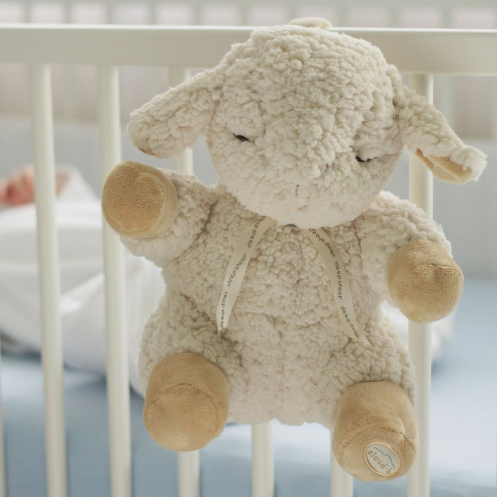 The Award Winning Infant's Sleep Sound Lamb2