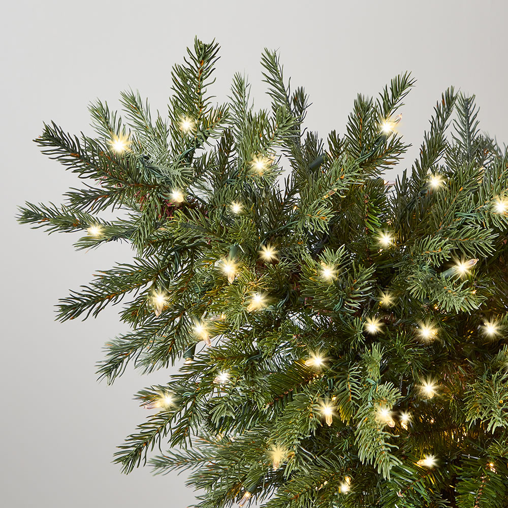 The World's Best Dual Lit Concolor Fir (7 5' Slim) 2