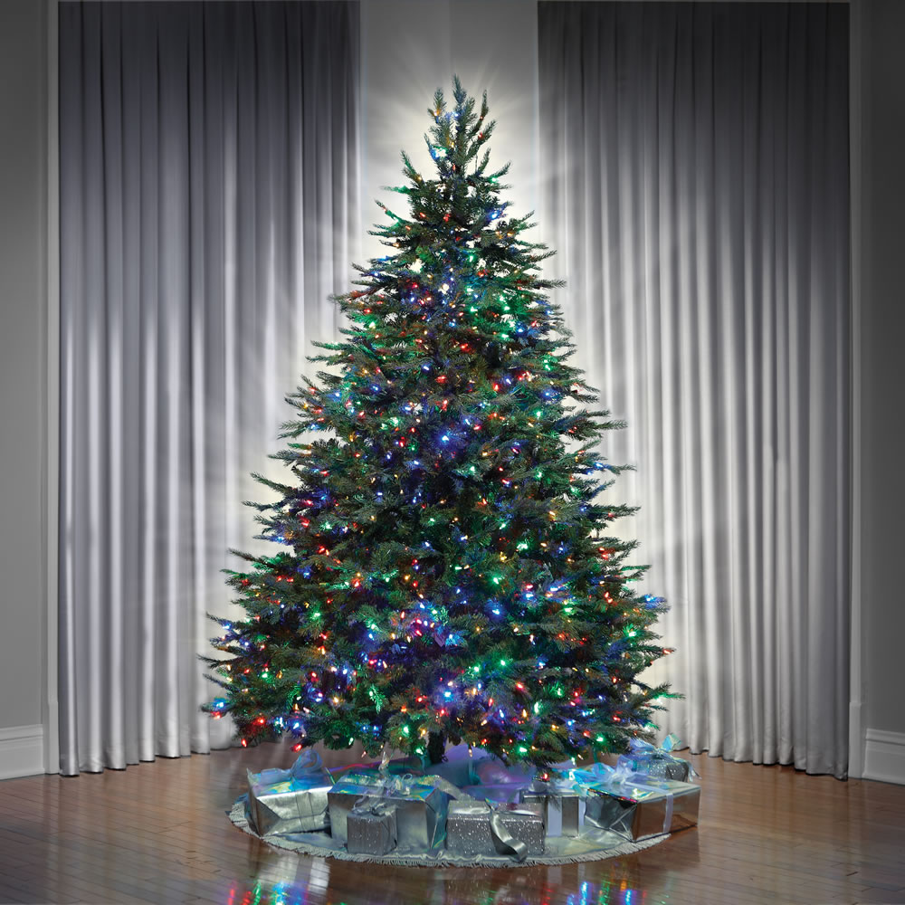 The World's Best Dual Lit Concolor Fir (7 5' Full) 3