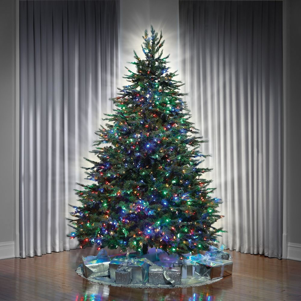The World's Best Dual Lit Concolor Fir (8 5' Slim) 3