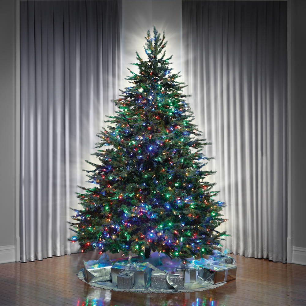 The World's Best Prelit Concolor Fir (8 5' Full)2