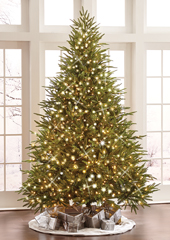 The World's Best Prelit Fraser Fir (6.5' Slim LED)
