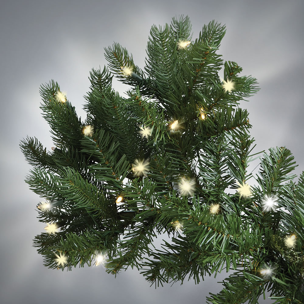 The World's Best Prelit Douglas Fir (6 5' Slim LED) 2