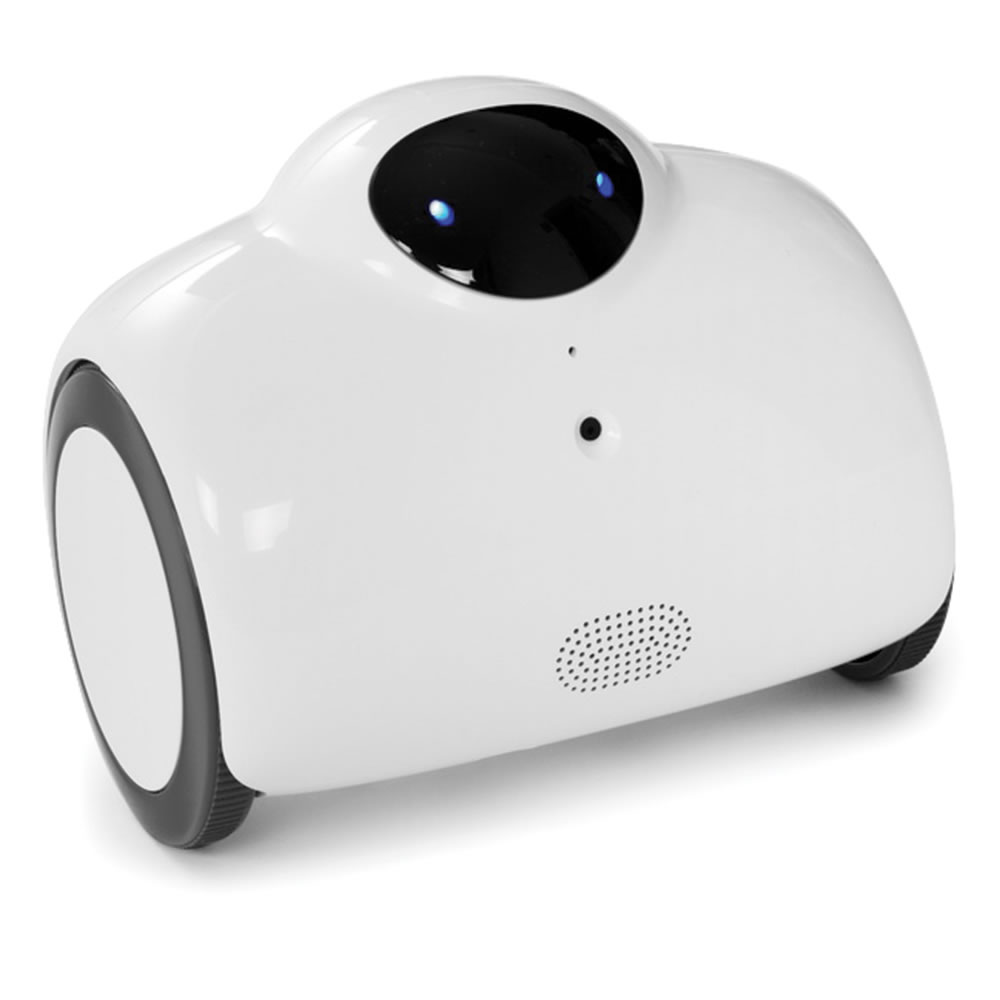 Image result for Hammacher Schlemmer's Smartphone Controlled Home Patrolling Robot.