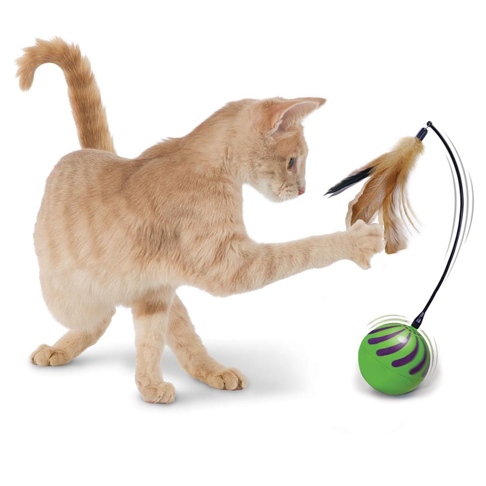 Oldest Cat Toys