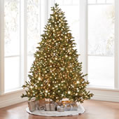 The World's Best Prelit Noble Fir (6.5' Slim LED).