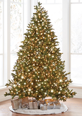 The World's Best Prelit Noble Fir (9.5' Slim LED)