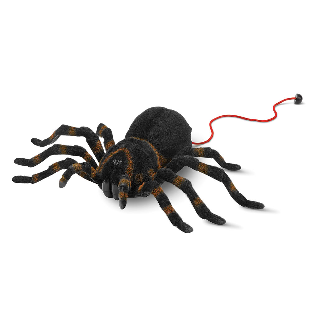 The RC Giant Tarantula 2