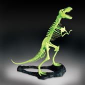 Glow In The Dark Trex