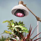 The Spectrum Optimized LED Grow Light.