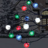 The Cordless Lighted Outdoor Ornaments.