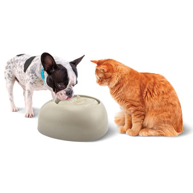 The Clog-Free Filtered Pet Fountain