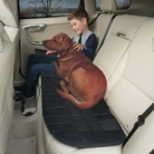 The Only Heated Back Seat Cushion.