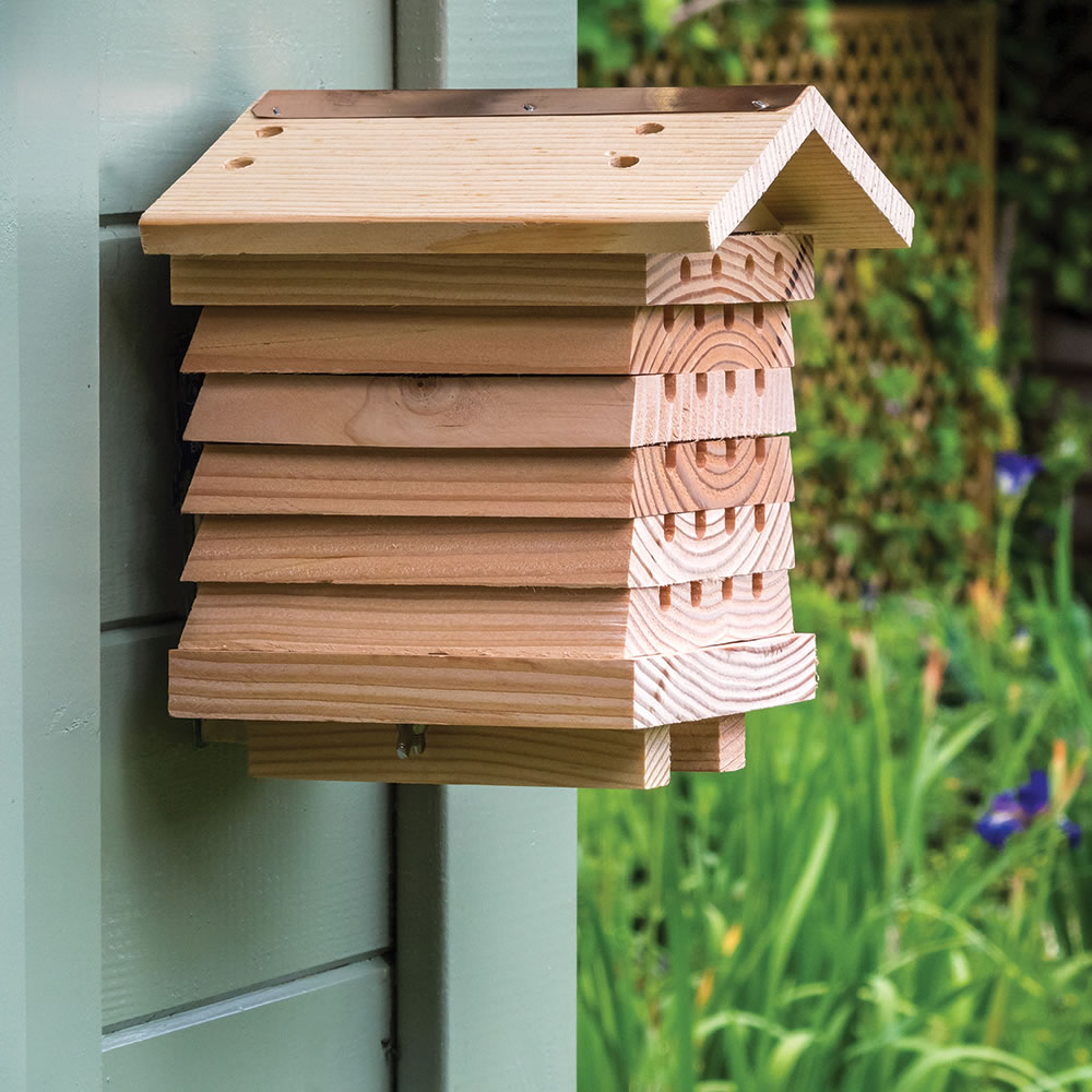 The British Horticulturist Bee House 4