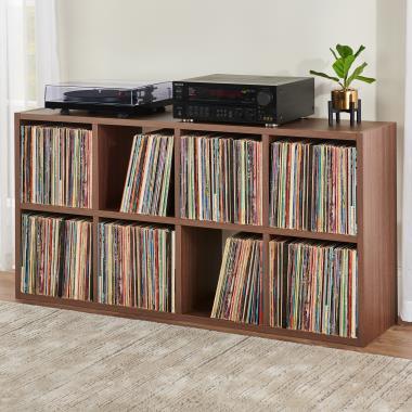 The Vinyl Collector's 1,200 LP Organizer.