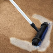 The Instant Rug Rejuvenator.