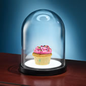 Lighted Curators Cupcake Capsule