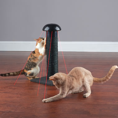 The Feline's Laser Chasing Scratch Post