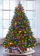 The World's Best Prelit Douglas Fir  (12' Full LED)