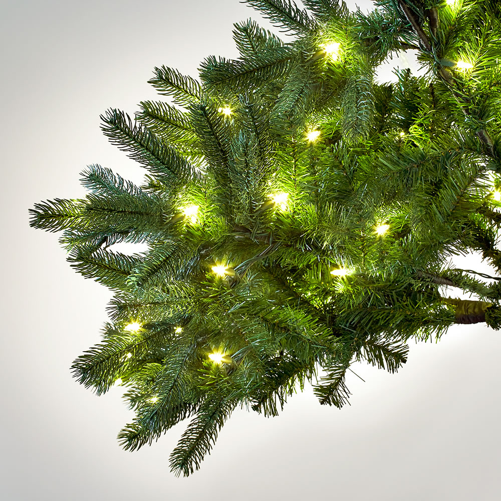 The World's Best Prelit Douglas Fir (7 5' Slim LED)4