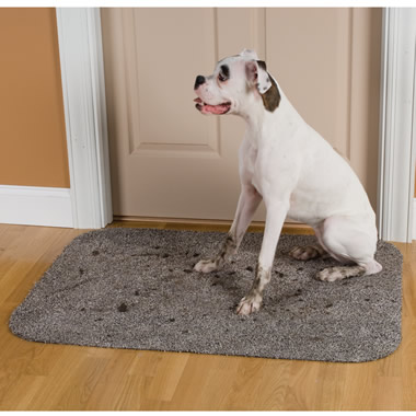 The Absorbent Low Profile Doormat (Large).
