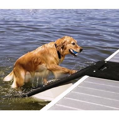 The Floating Dog Dock.