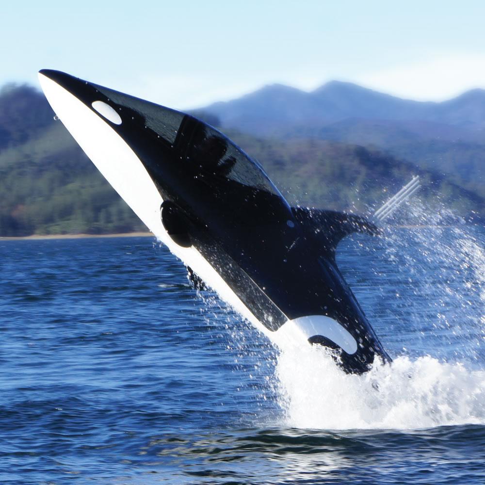 the killer whale submarine hammacher schlemmer