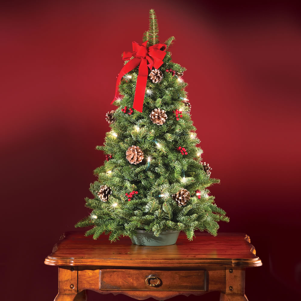The Freshly Cut Prelit Tabletop Tree - Hammacher Schlemmer