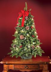 The Freshly Cut Prelit Tabletop Tree