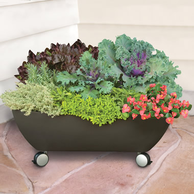 The Mobile Patio Garden