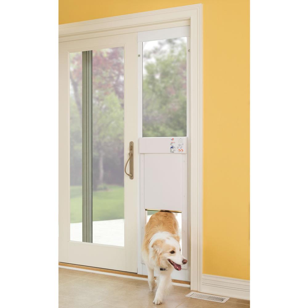 sliding hiremail door ideas for top reviews info pet doors petsafe design inspired electronic