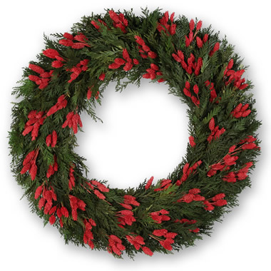 The Preserved Cedar and Red Phalaris Wreath